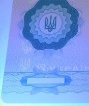 Диплом - свечение УФ (Константиновка)